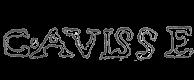 Guillaume Avisse